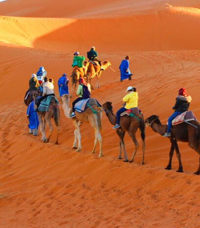 Why to Choose Morocco Desert Tours?